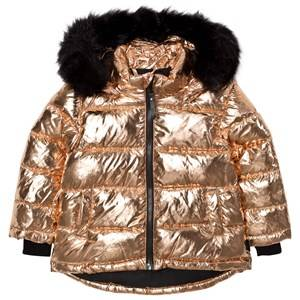 Molo Girls Coats and jackets Gold Hedia Jacket Copper