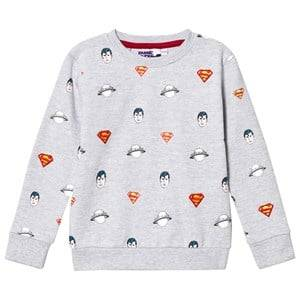 Fabric Flavours Boys Jumpers and knitwear Grey Grey Superman All Over Print Sweatshirt