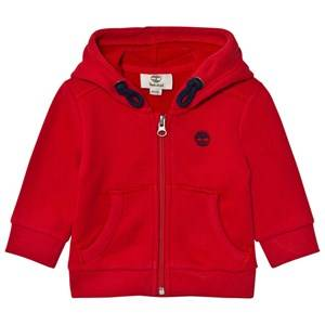 Timberland Boys Jumpers and knitwear Red Red Tree Logo Hoodie
