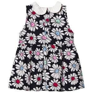 Margherita Kids Girls Dresses Multi Multi Floral Printed Daisy Collar Dress