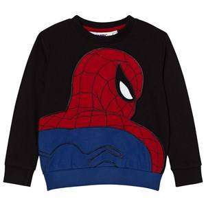 Fabric Flavours Boys Jumpers and knitwear Black Black Spider-Man Applique Sweatshirt