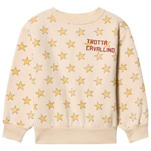 The Animals Observatory Unisex Jumpers and knitwear Pink Bear Sweatshirt Salmon Stars