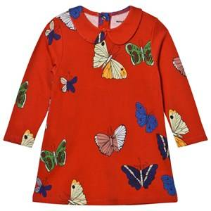 Mini Rodini Girls Dresses Red Butterflies Collar Dress Red