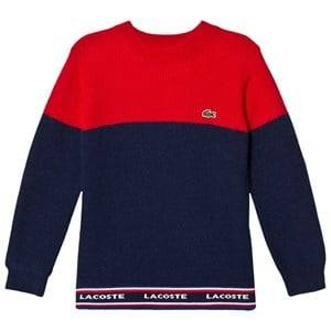 Lacoste Boys Jumpers and knitwear Red Red and Navy Colour Block Branded Knit Jumper