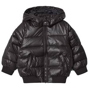 The BRAND Girls Private Label Coats and jackets Black Lack Puff Jacket Shiny Black
