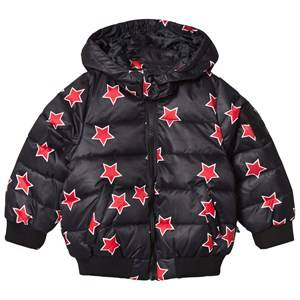 The BRAND Girls Private Label Coats and jackets Red Lack Puff Jacket All Stars