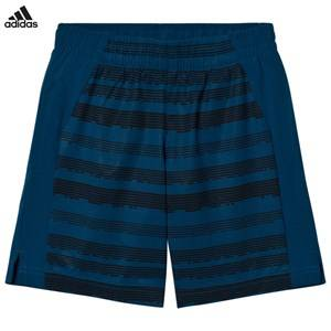 adidas Performance Boys Shorts Blue Navy Printed Training Shorts