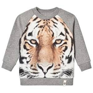 Popupshop Unisex Jumpers and knitwear Grey Basic Sweat Tiger
