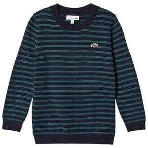 Lacoste Boys Jumpers and knitwear Navy Navy and Green Stripe Branded Knit Jumper