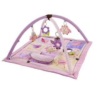 Skip Hop Unisex First toys and baby toys Pink Owl Patch Activity Gym