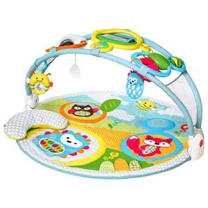 Skip Hop Unisex Norway Assort First toys and baby toys Multi Explore & More Amazing Arch™ Activity Gym