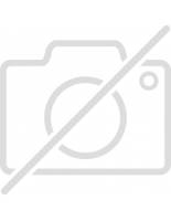 Megadeth - Eagle -Flag