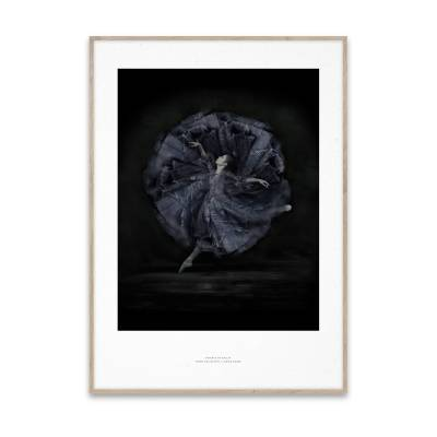 Paper Collective Essence of Ballet 06