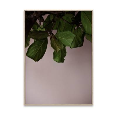 Paper Collective Juliste Green Leaves 40 x 30
