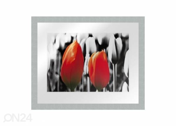 Taulu MODERN - TWO RED TULIPS1 20x25 cm