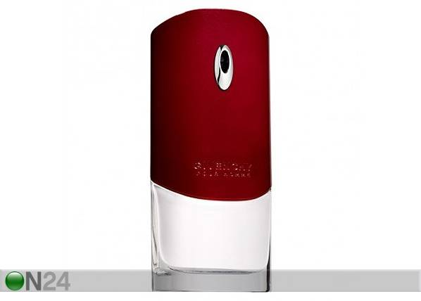 Givenchy Pour Homme EDT 100ml