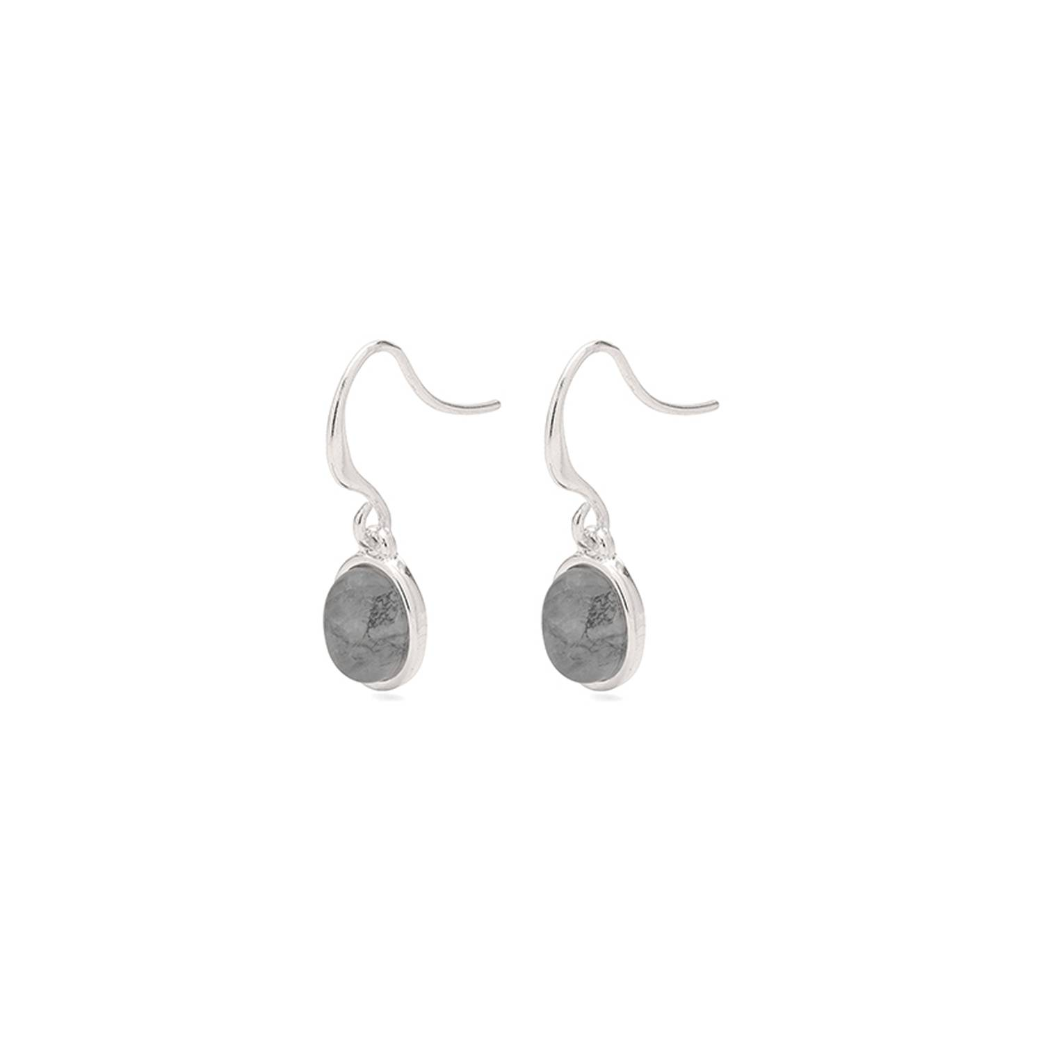 Pilgrim Hayden Earrings