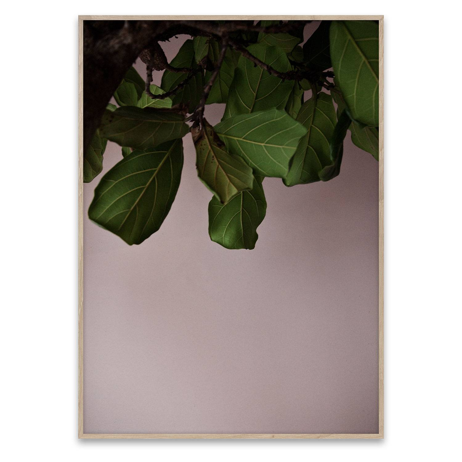 Paper Collective Green Leaves Poster 40x30