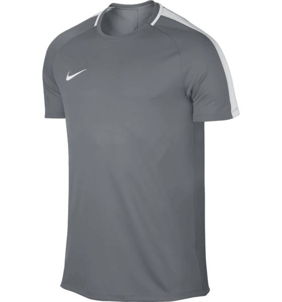 Nike Jalkapallovaatteet Nike M Nk Dry Acdmy Top Ss COOL GREY/WHITE (Sizes: M)