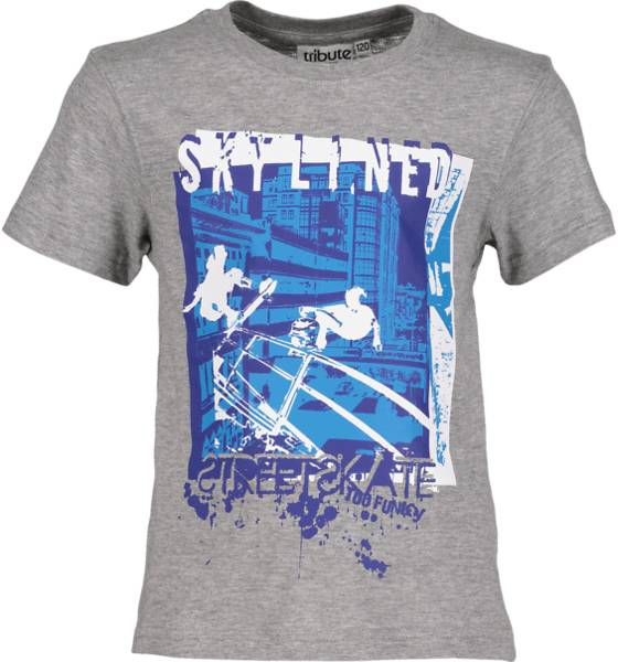 Tribute T-paidat & topit Tribute So Print Tee B Jr SKATE GREY MELANGE (Sizes: 110)