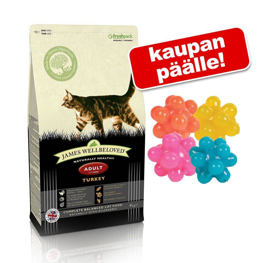 James Wellbeloved kissanruoka + nystyräpallot kaupan päälle! - Adult Oral Health Turkey (4 kg)