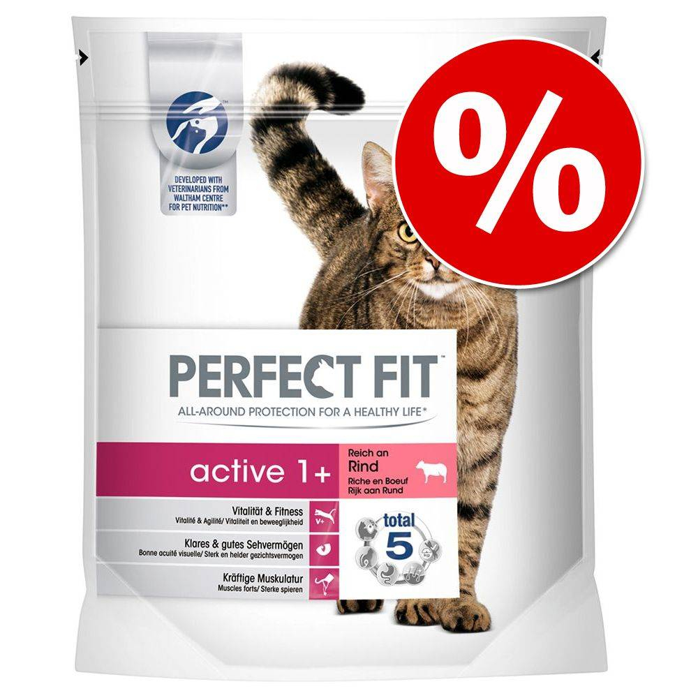 Perfect Fit 1,4 kg Perfect Fit -kissanruokaa: 1 kg + 400 g kaupan päälle! - Active 1+ Rich in Beef