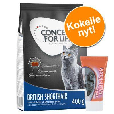 Concept for Life Kokeile: 400 g Concept for Life + 50 g Smilla Malt Paste! - Maine Coon