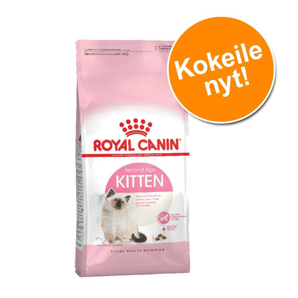 Royal Canin Breed Tutustumishintaan: 400 g Royal Canin kissanpennuille - Maine Coon Kitten (korkeintaan 15 kk)
