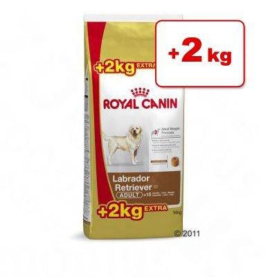 Royal Canin Breed -bonuspakkaus 12 kg + 2 kg - German Shepherd Adult