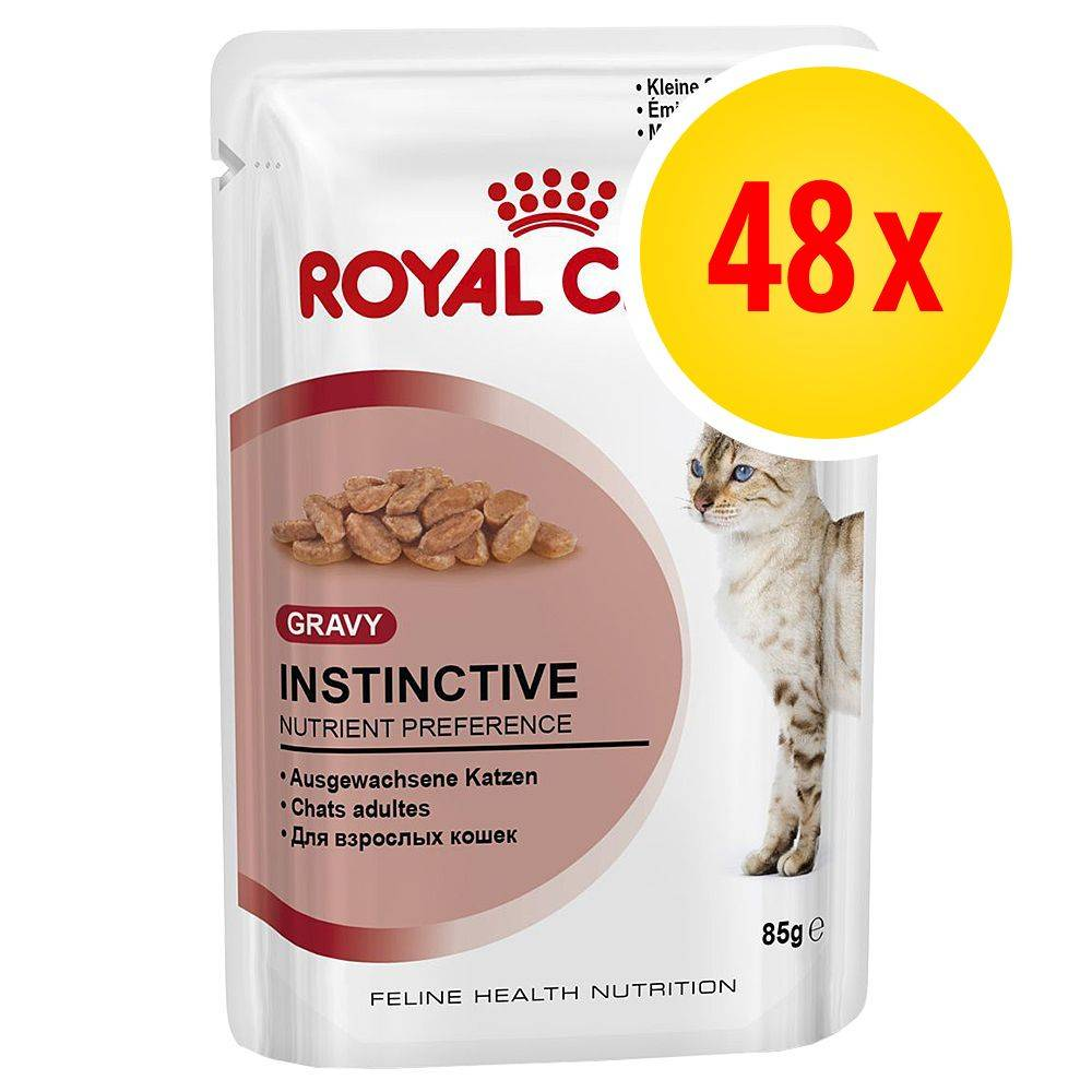 Royal Canin Säästöpakkaus: Royal Canin 48 x 85 g - Intense Beauty in Gravy