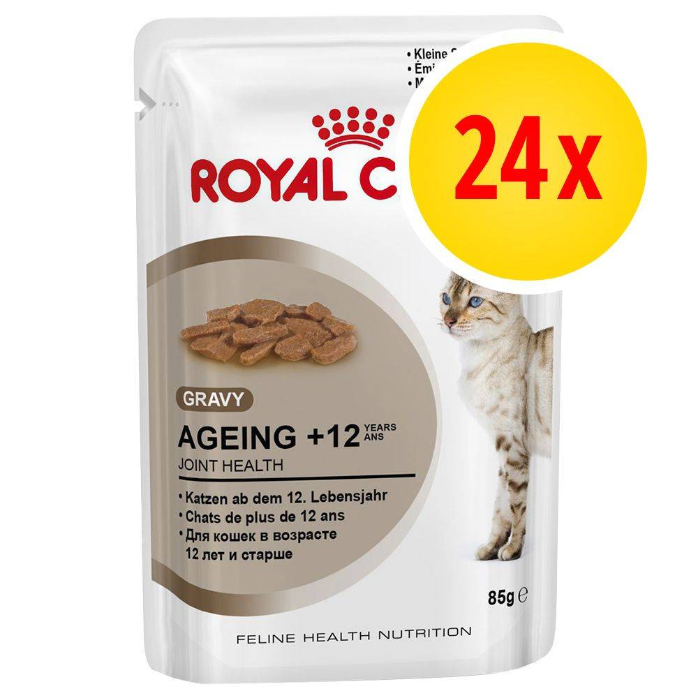 Royal Canin -säästöpakkaus 24 x 85 g - Intense Beauty in Jelly