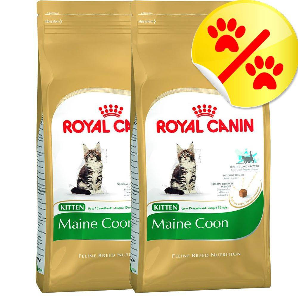 Royal Canin Breed Royal Canin Maine Coon Kitten - säästöpakkaus: 2 x 10 kg