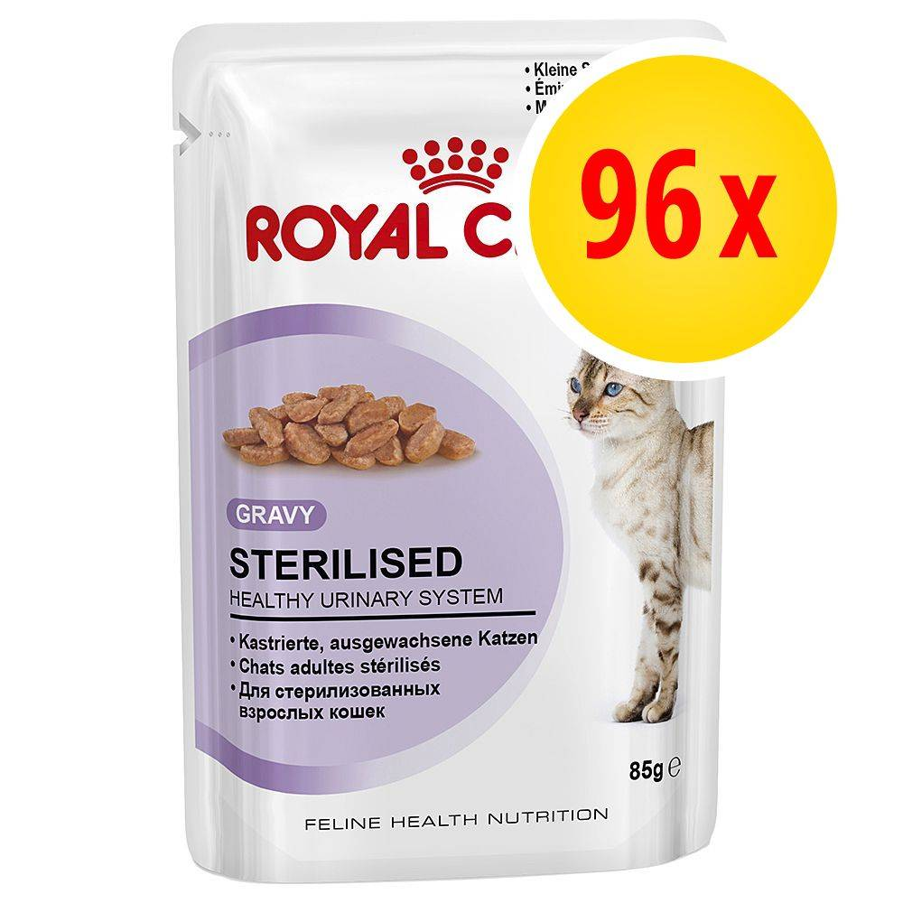 Royal Canin -säästöpakkaus 96 x 85 g - Intense Beauty in Gravy