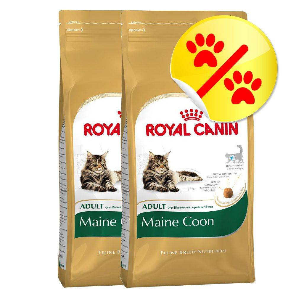 Royal Canin Breed Säästöpakkaus: Royal Canin Maine Coon Adult - 2 x 10 kg