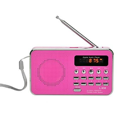 iMinker Mini Digital Portatile Music Player Radio FM dell'altoparlante di mezzi MP3 Port TF / SD USB Disk per PC iPod Phone con display a LED e batteria ricaricabile (Rosa)