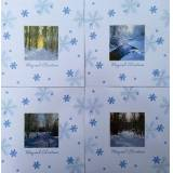 The Card Company 12 'Glitter Snow Scenes' Luxury Square Christmas Cards, With Envelopes, 4 Designs
