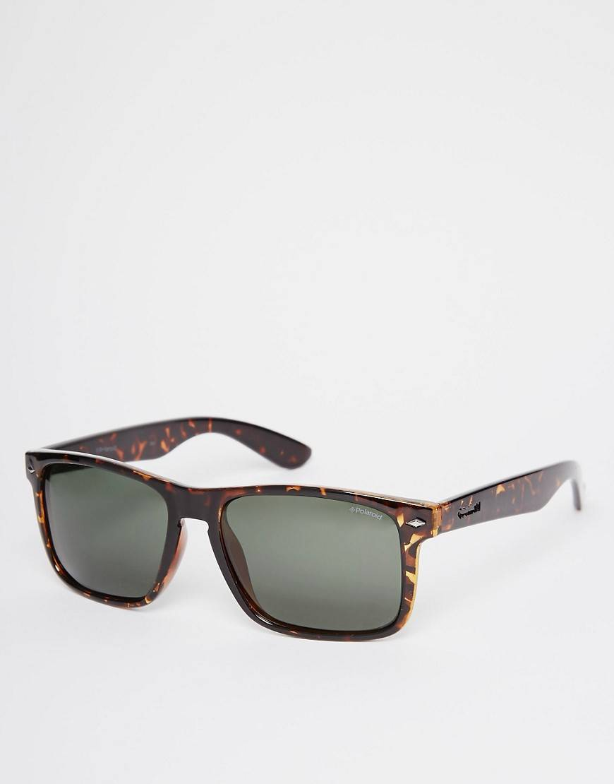 Polaroid Wayfarer Sunglasses - Brown