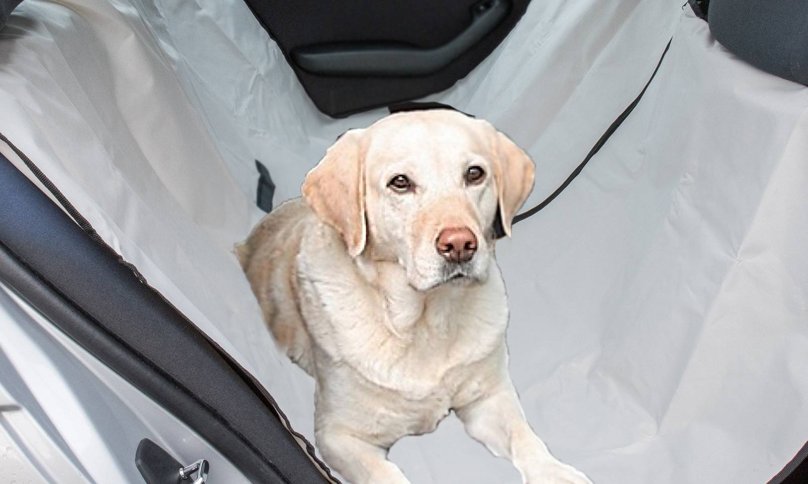 Pet Seat Cover Protector - Grey
