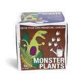 Gift Republic Cadeau set République semer et cultiver des plantes de Monster