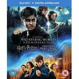 Warner Home Video Collezione Film di Harry Potter Wizarding World 9 [Blu-ray] [2017] ...