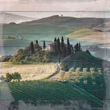 QUEENCE Holzbild »Weinberge in der Toscana«, 40x40 cm Echtholz