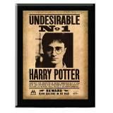 Noble Collection Harry Potter Plakette Harry Potter Undesirable No. 1