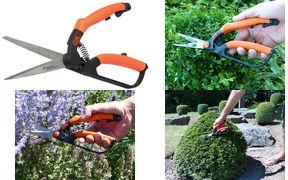 Garten PRIMUS Buchsbaumschere, klein, Länge: 260 mm für den leichten Form- und Feinschnitt, angepasst auf die - 1 Stück (01200)