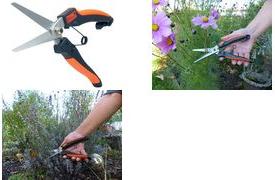 Garten PRIMUS Stauden- & Kräuterschere, Länge: 231 mm Gartenschere für Grob- & Feinrückschnitte, für Rechts - 1 Stück (01050)
