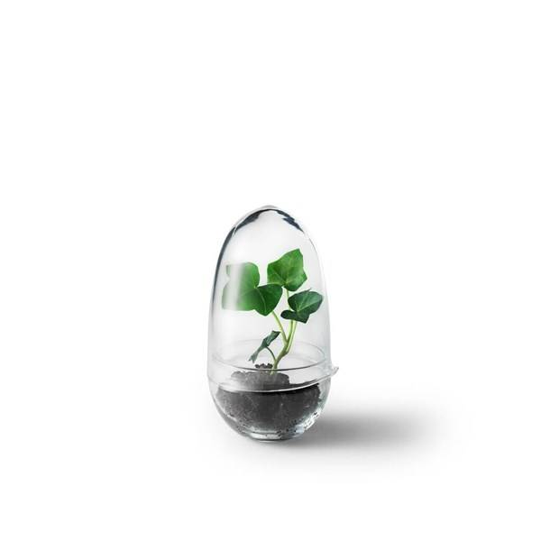 Design House Växthus Grow Small Dia 8 cm