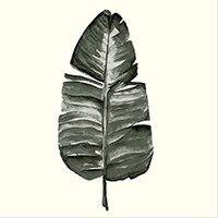 Broste Pappersservetter Leaf 33x33 cm