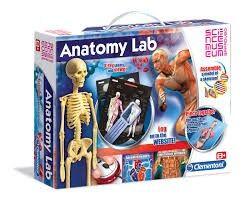 Anatomilabb, Clementoni