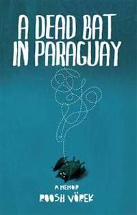 A Dead Bat In Paraguay: One Man