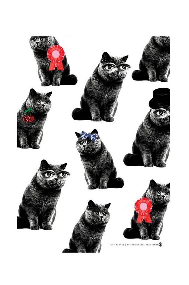 Studio Lisa Bengtsson Cat Attack -juliste, A3