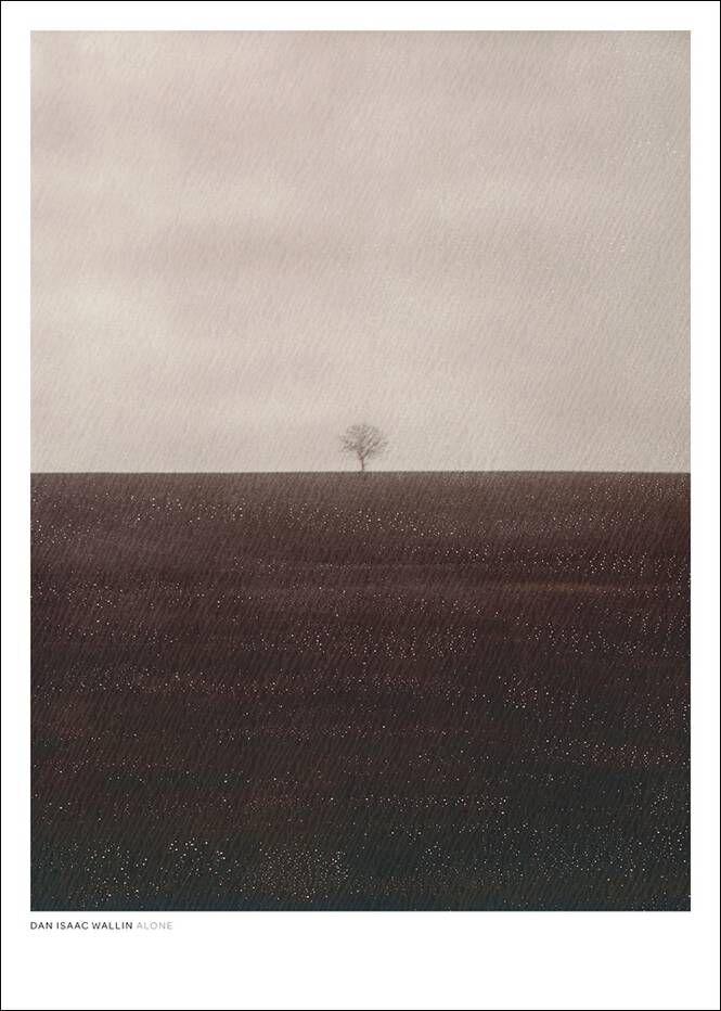 Dan Isaac Wallin Alone-juliste 50x70 cm